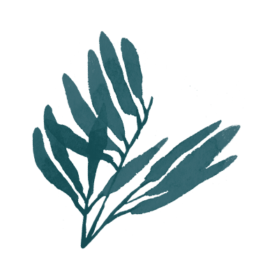 blue leaves.png