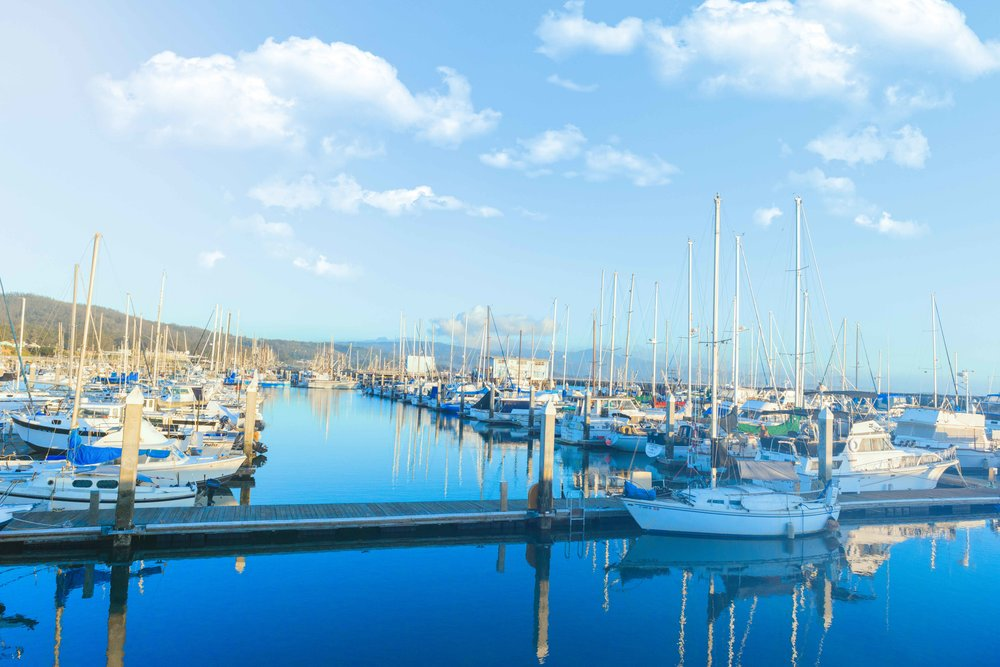 Our studio is steps away from the Half Moon Bay Harbor also known as Pillar Point and Princeton by the Sea.