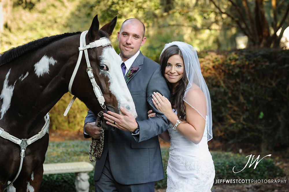 Bride and groom with horse at wedding Golden Ocala