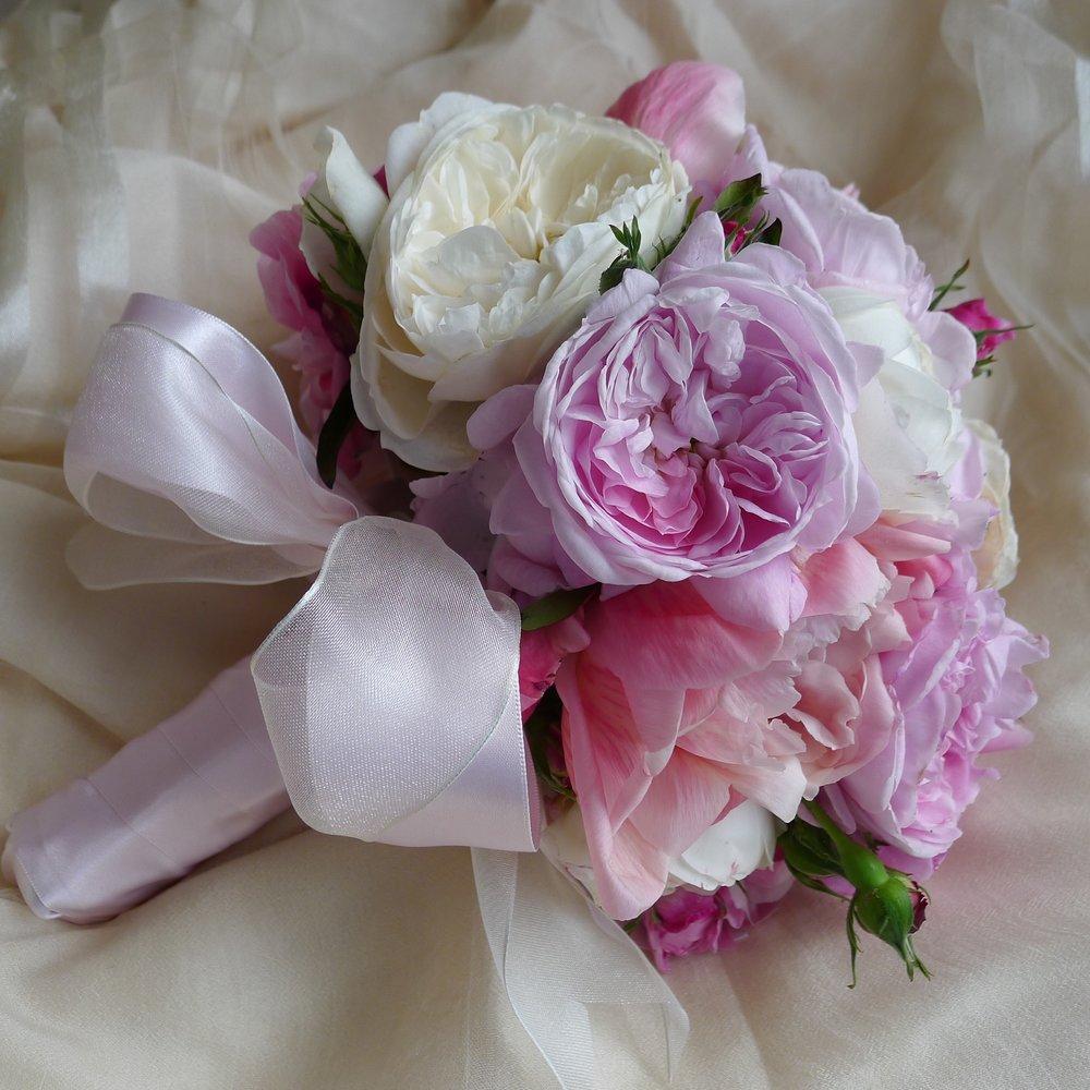 romantic david austin roses