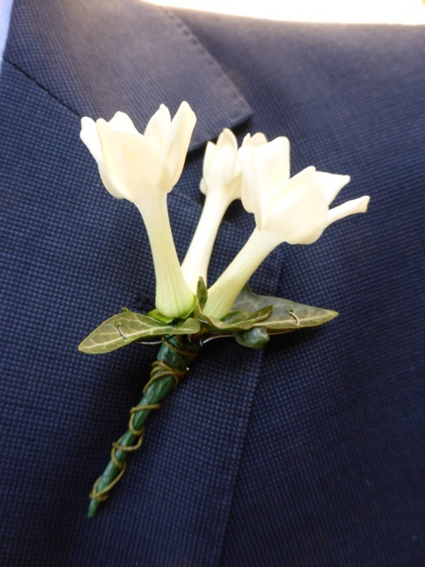 Stephanotis buttonhole