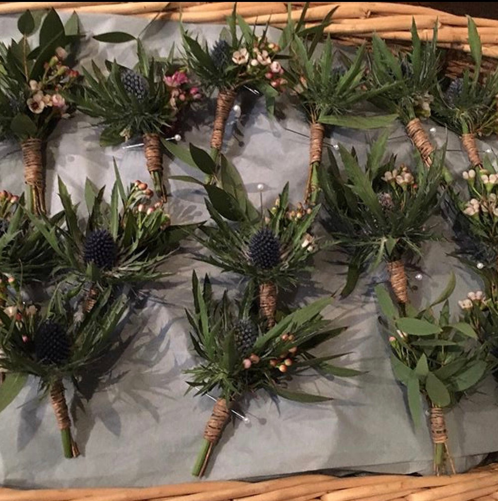 eryngium and wax flower buttonholes