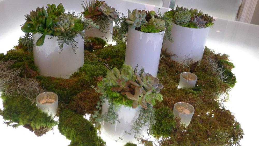 succulent tablescape, illuminated tables, savannah, usa