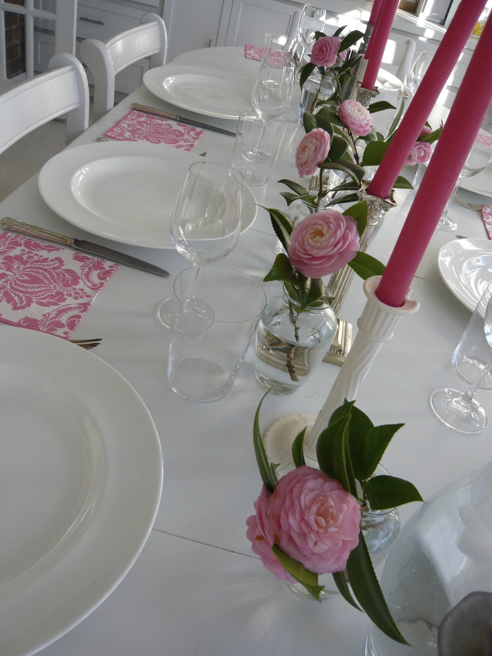 pink camellia theme, savannah, usa
