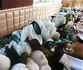 magnolia grandiflora in savannah, ga