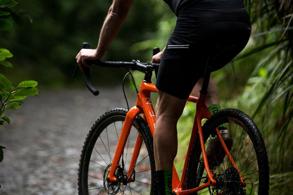 nzcj_openup_bike1.jpg