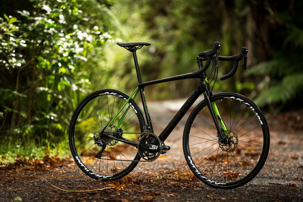 cannondale-synapse-new-zealand-cycling