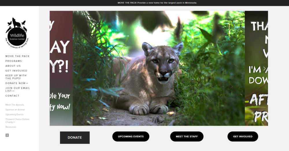 wildlife-center-mn-website-development-brook-maier-rekinspire.PNG
