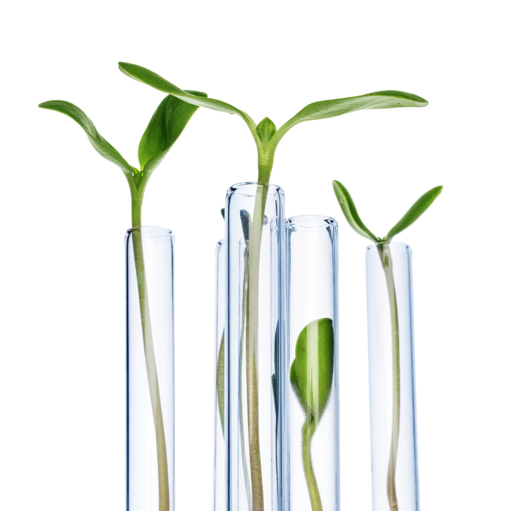 Tuotesarjanfilosofia - 100% luonnollisia kasviuutteitaEI parabeenejaEI SLES/SLS sulfaattejaEI mineraaliöljyäEI lisättyjä väri - tai hajusteaineitaEI lanoliiniaEI mikromuoveja90% hallinta kaikista aknetapauksista