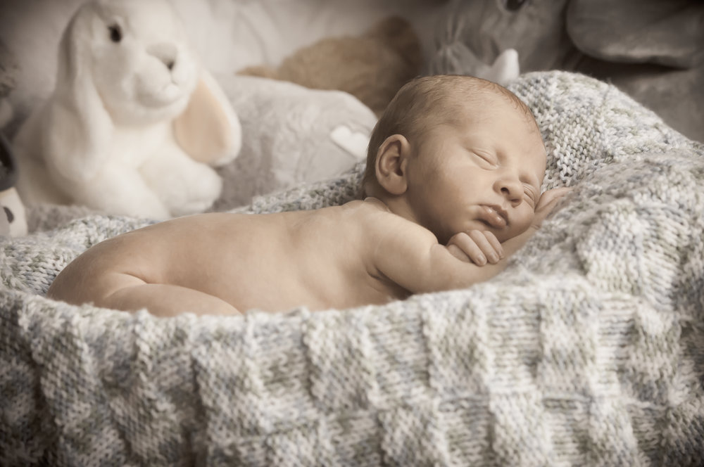 CarrieWestonStudios_NewBorn_Portraits_NY_Photography_Photographer-3130.jpg