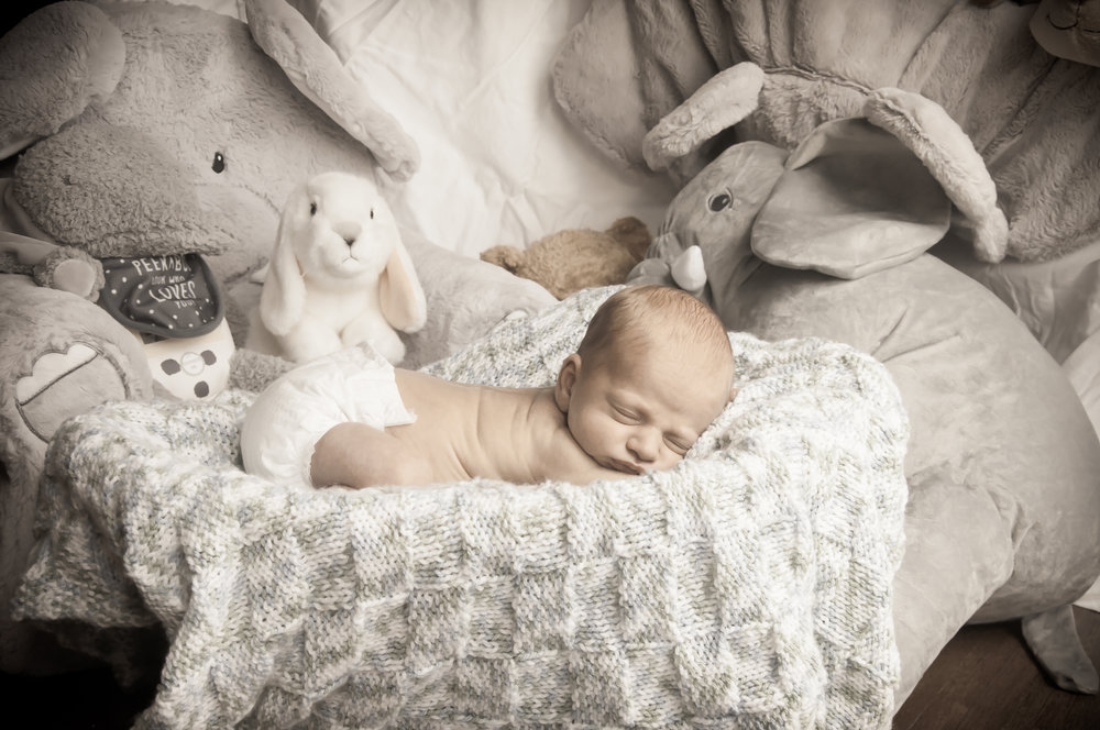 CarrieWestonStudios_NewBorn_Portraits_NY_Photography_Photographer-8957.jpg