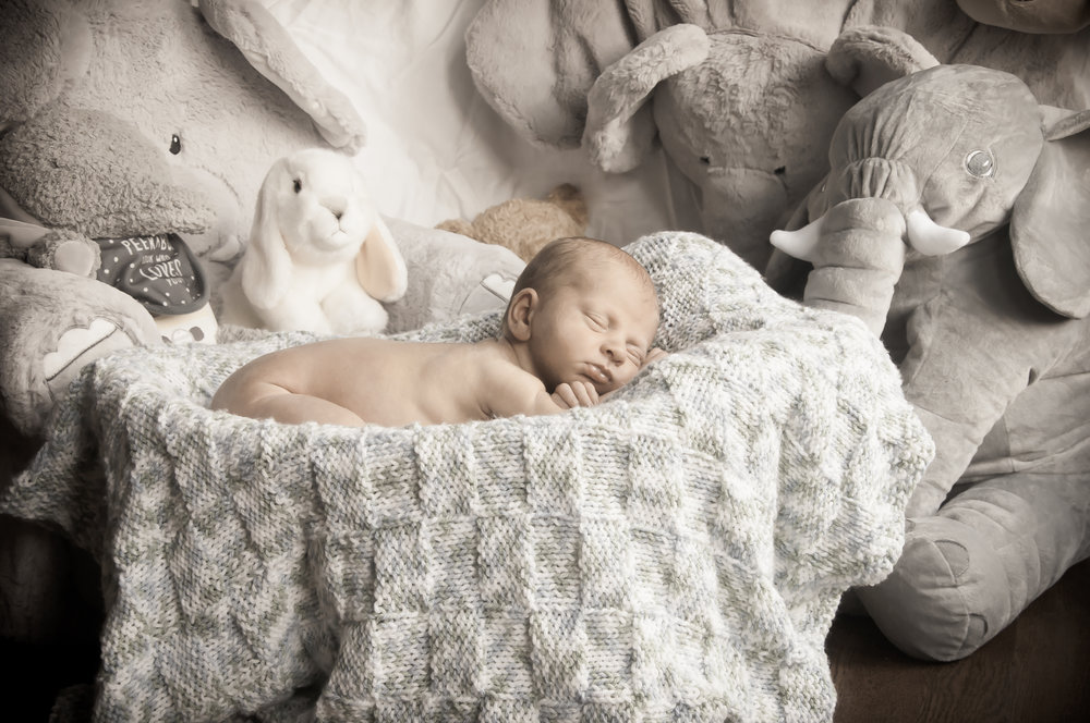 CarrieWestonStudios_NewBorn_Portraits_NY_Photography_Photographer-8974.jpg