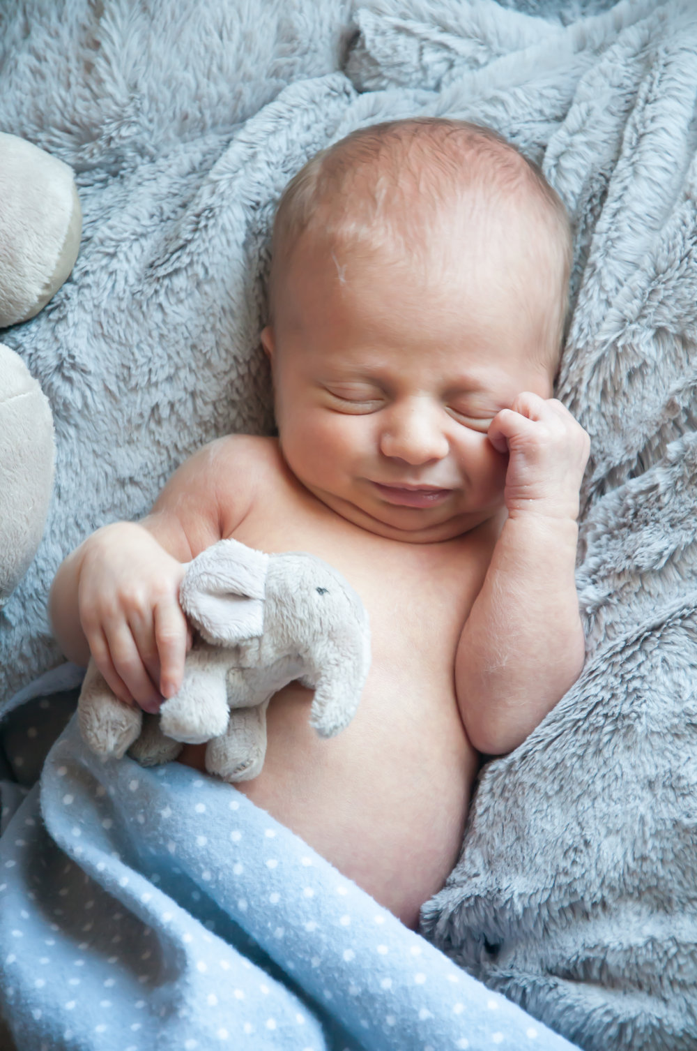 CarrieWestonStudios_NewBorn_Portraits_NY_Photography_Photographer-9122.jpg