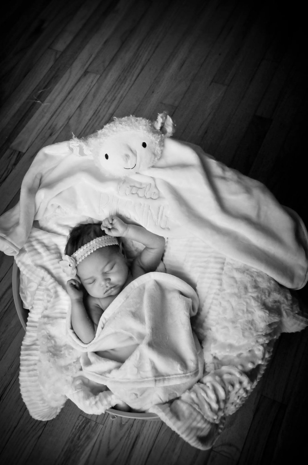 CarrieWestonStudios_CarrieAnneGonzalez_Portrait_wedding_Photography_Northport_Newborn_Isabelle12.jpg