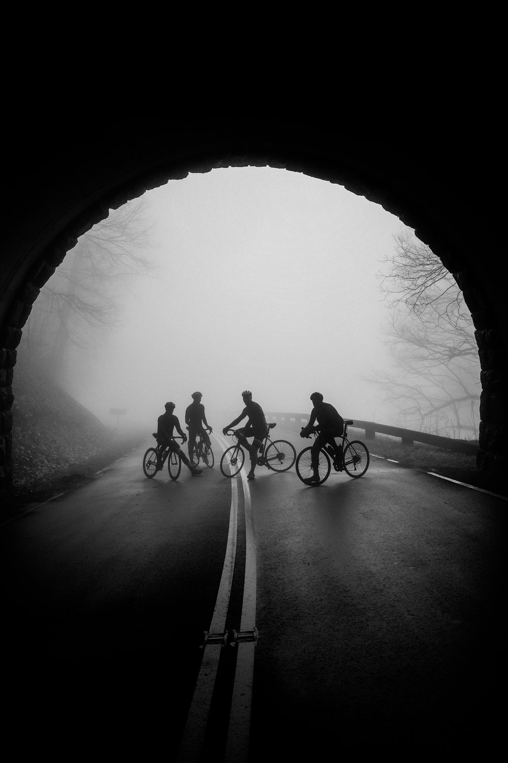 MAGIC HAPPENS - when the Blue Ridge Parkway closes to thru-traffic for winter...and the fog rolls in.