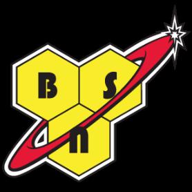 Brand Logo BSN.png
