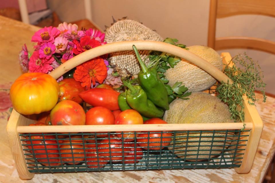 basket (1).jpg