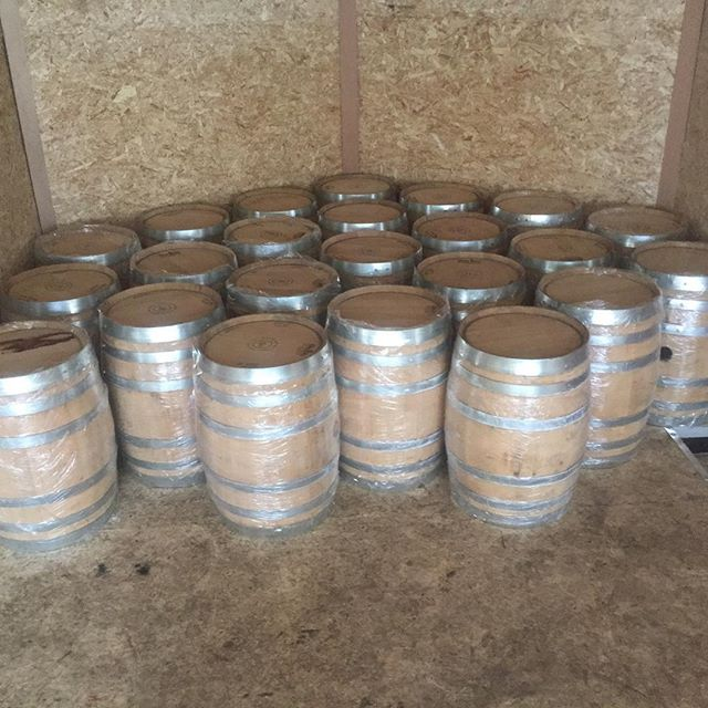 We just picked up some fresh dumped 10 gallon gin barrels! Great for craft brewers or home brewers. #gin #ginbarrels #barrel #barrelaged #barrelagedbeer #beer #craftbeer #homebrew