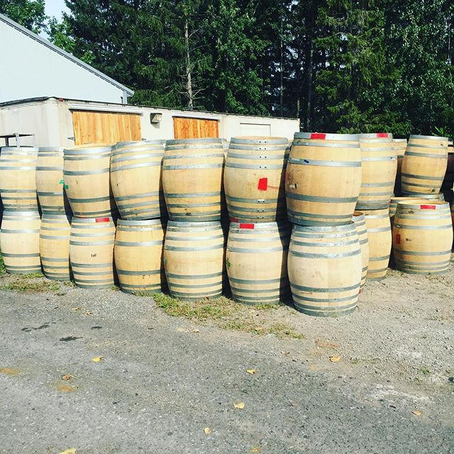 We have all sorts of beautiful wine barrels. Just in time for harvest. 1x 2x 3x fills and neutrals. Whites and reds. Like new pristine condition wine barrels from high end wineries. Contact us for info! #pinotnoir #cabernetsauvignon #cabernetfranc #chardonnay #wine #winebarrels #harvest #redwine #whitewine #barrelaged