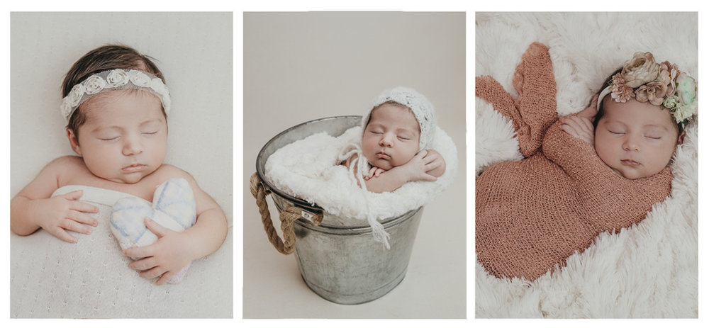 posed newborn photos