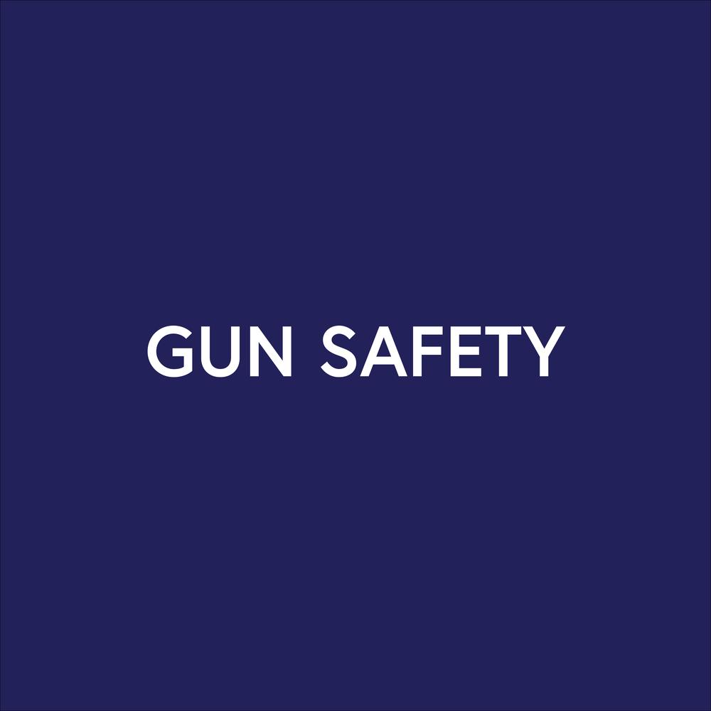GUNS-01.png
