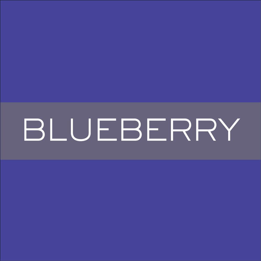 INK_Blueberry.jpg.jpeg