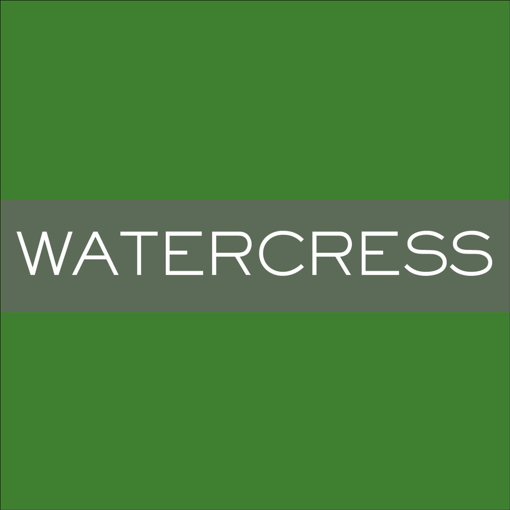INK_Watercress.jpg.jpeg