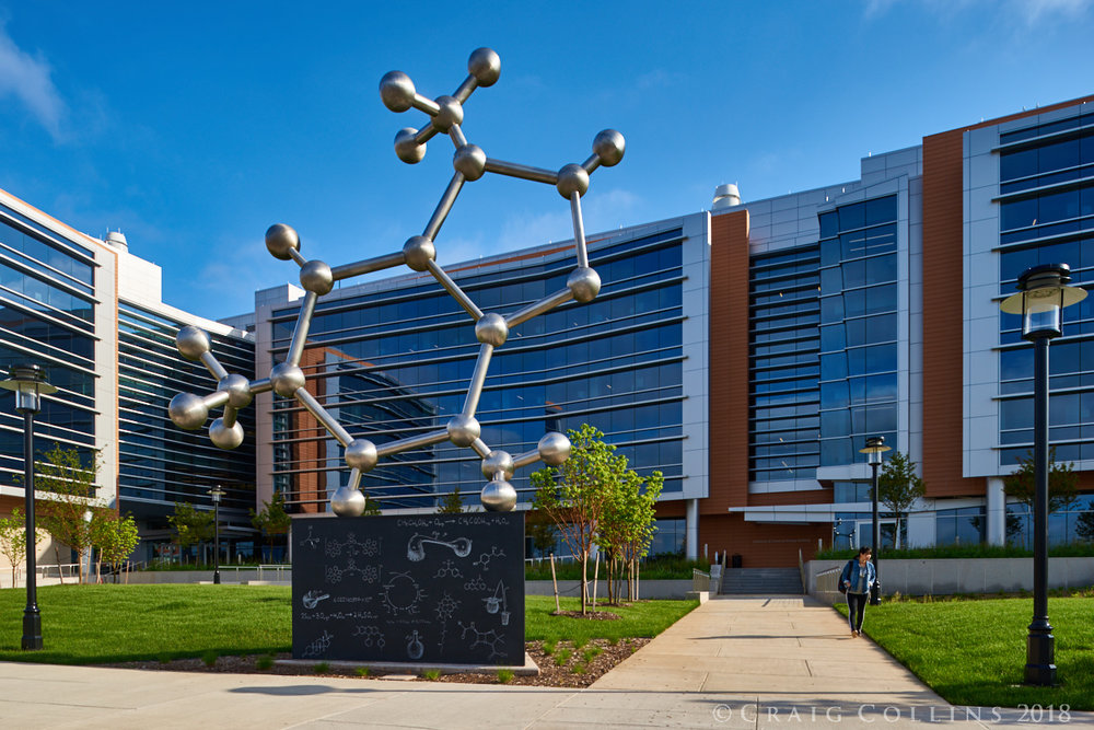 Larry Kirkland_Rutgers_PhD Molecule_Craig Collins_Public Art Services_J Grant Projects_8.jpg