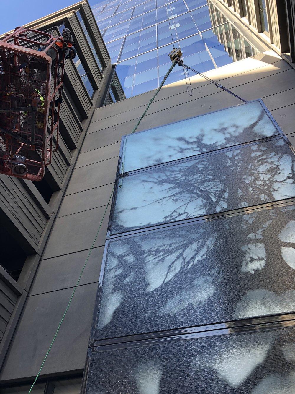 David Zimmer_16 Chestnut_Denver_Public Art Services_J Grant Projects_Echo_6.jpg
