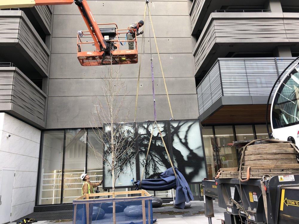 David Zimmer_16 Chestnut_Denver_Public Art Services_J Grant Projects_Echo_10.jpg