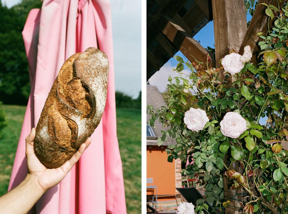 BREAD + ROSES.jpg