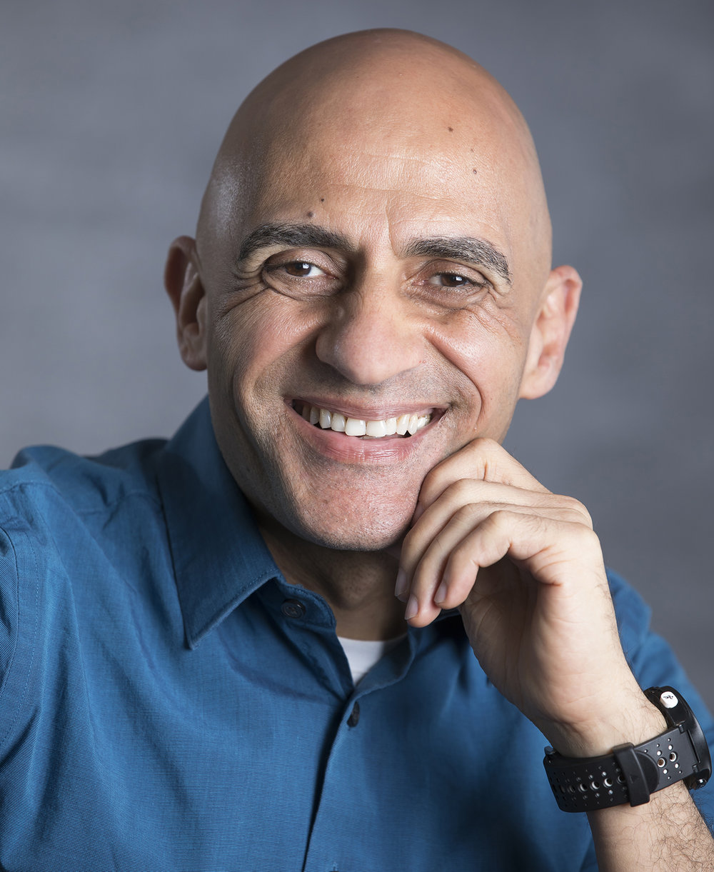 Ehab Meselhe - The Water Institute of the Gulf vice president for engineering