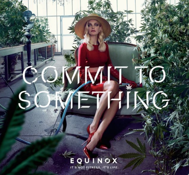 Image: Equinox.com