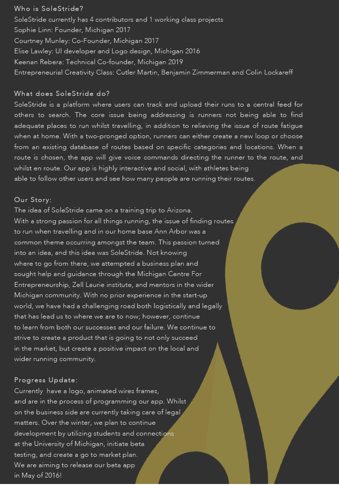 Our one page pitch detailed everyone who had a hand in helping SoleStride, addressed our core issue we were addressing, and how we came to realising the issue. Click   here   to see enlarged version.