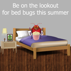 BedBugs_Blog-01-300x300.png