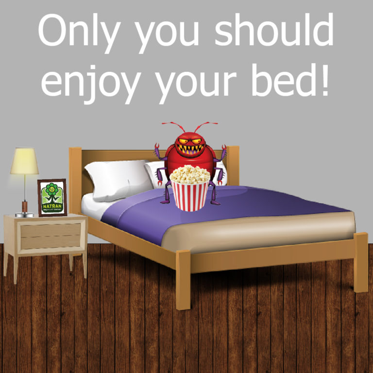 BedBugs-01-768x768.jpg