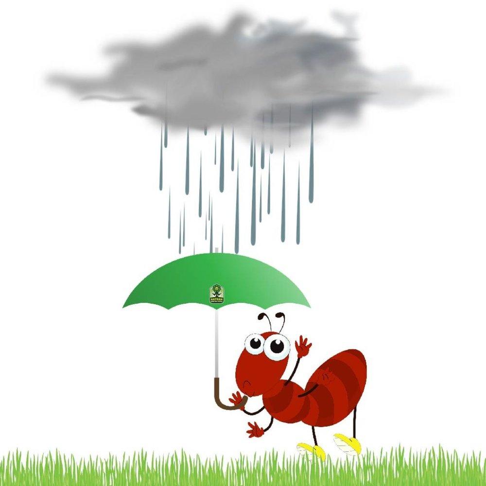 Rainy-Day-01-1024x1024.jpg
