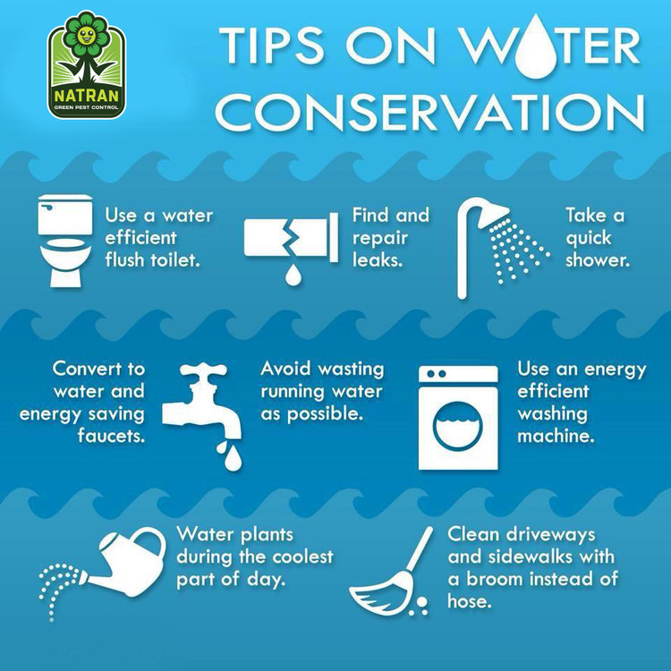 Sustainable Suggestion – Water Conservation — Natran Green Pest Control