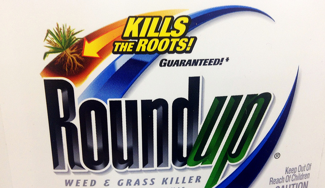 The product label for RoundUp Weed & Grass Killer, Image Licensed for Reuse via Flickr