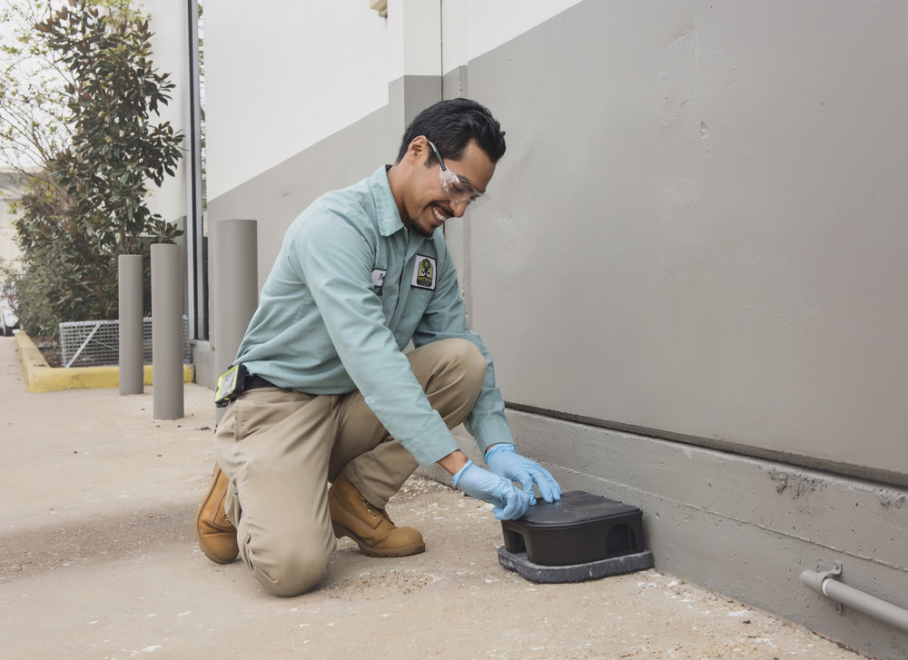 rodent-control-protection-houston.jpg
