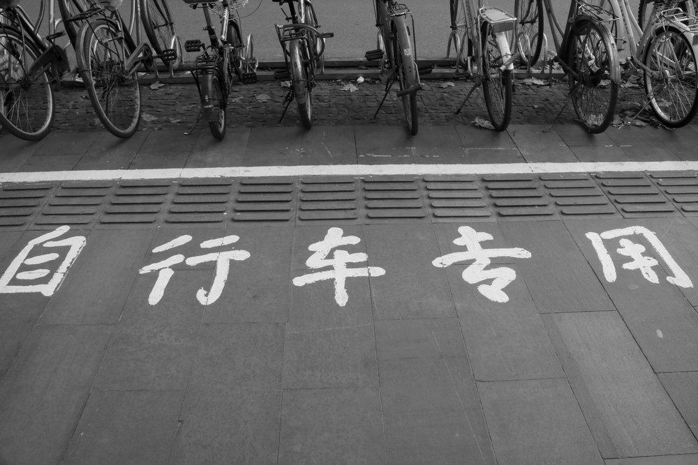 jingyi-wang-172894.jpg