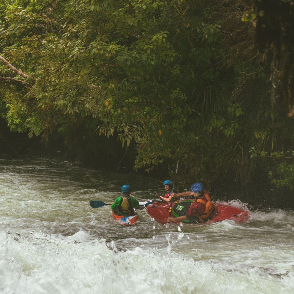A local white water kayaker launches off the Okere Falls section of the famous Kaituna River