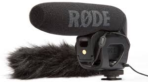 The  RODE MIC  is a must. That fluffy thing aka a dead cat can help remove background noice.