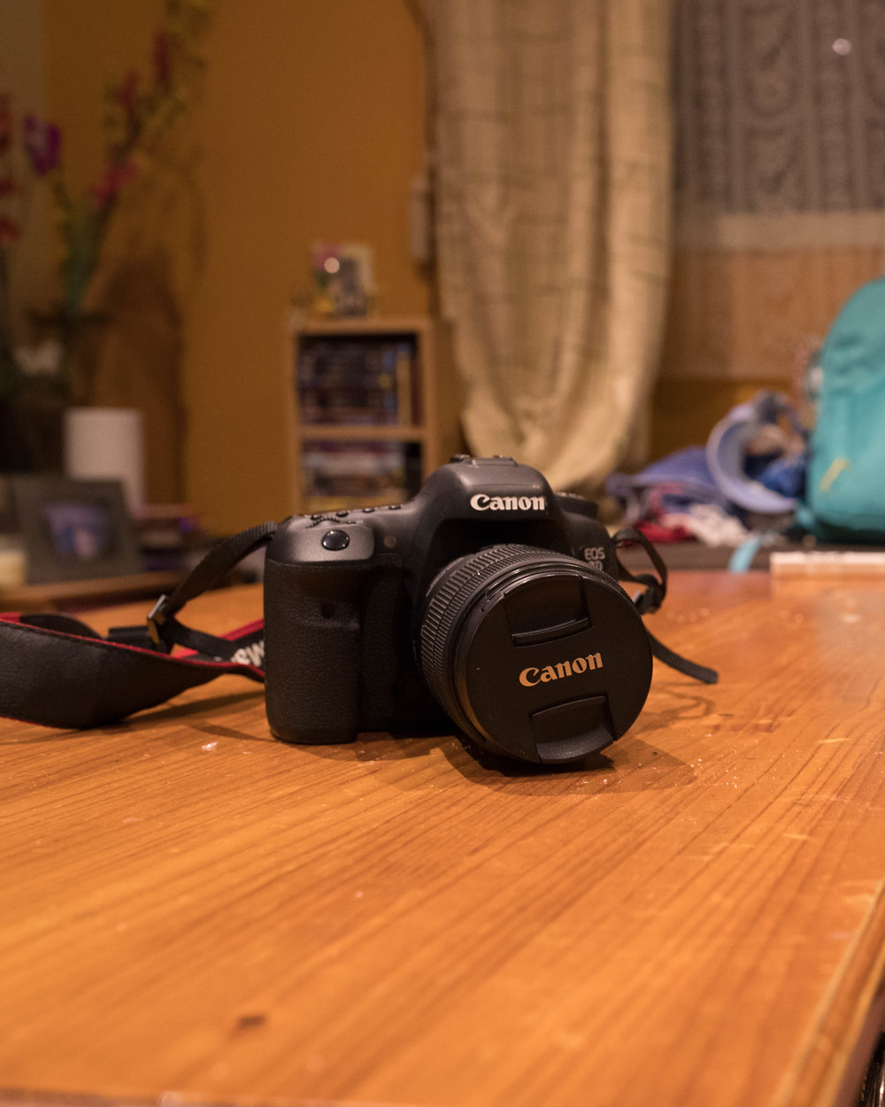 Shot at 35mm Focal- Aperture f5.6