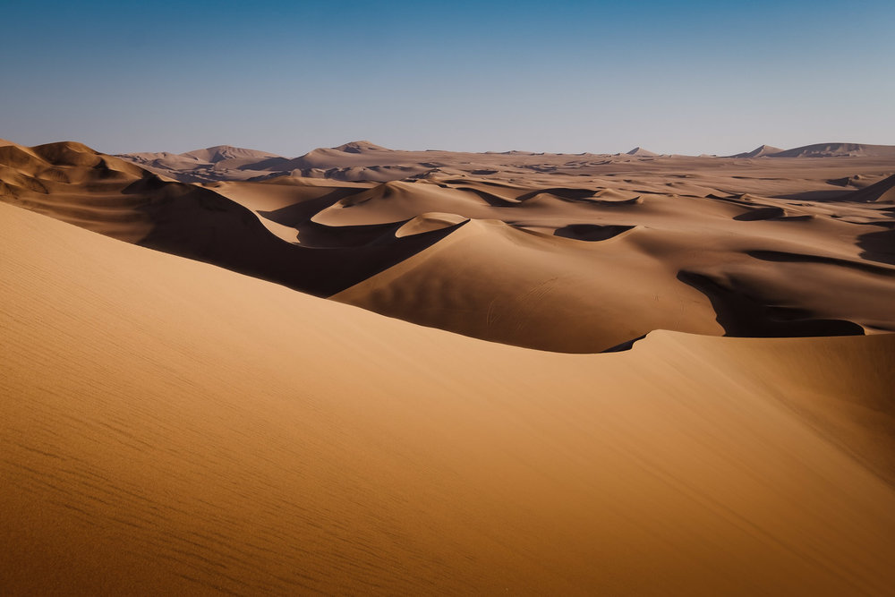 Endless dunes. (Photo sourced from Google)