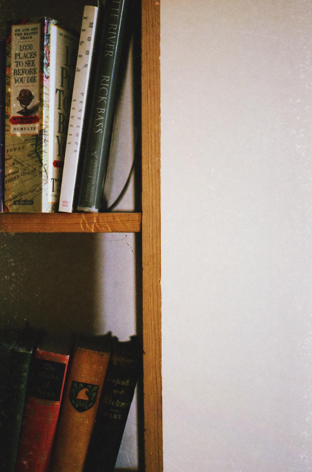 Our bookshelf (2012)