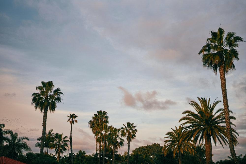 2019-3-4 San Diego Layover-013.jpg