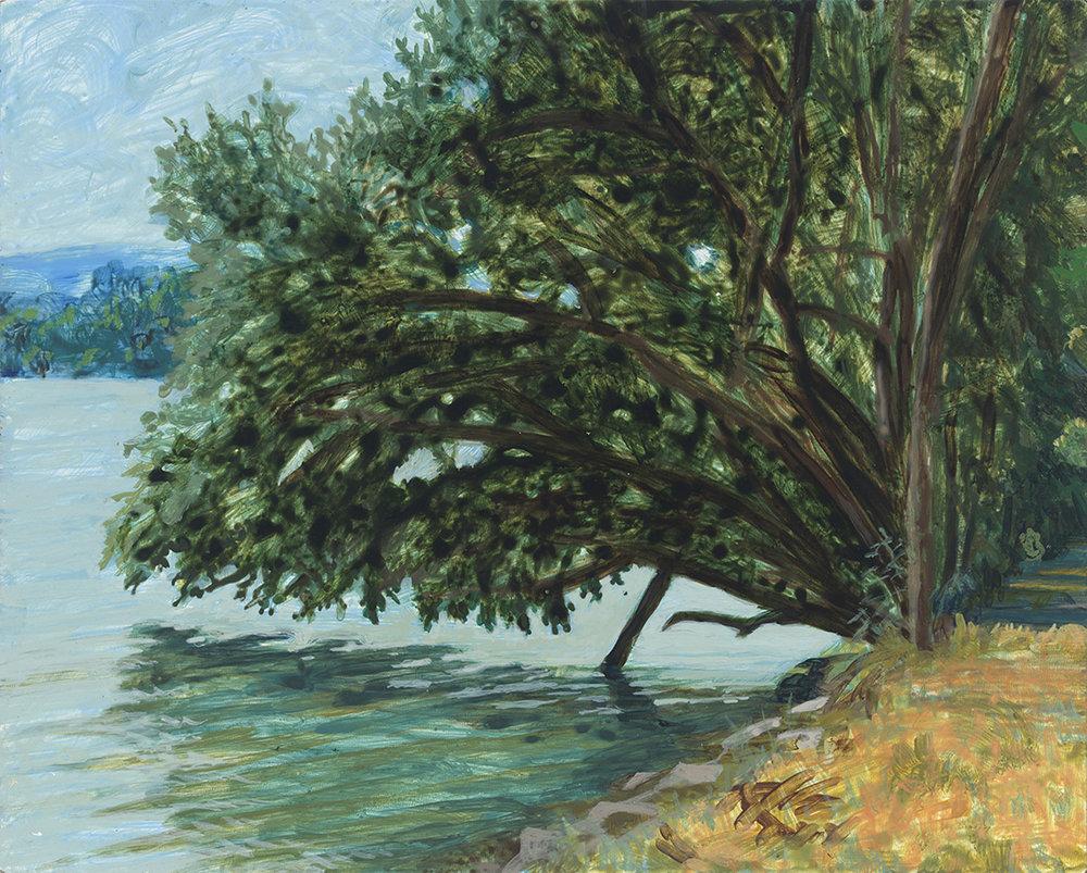 "Beaver Site on the Danube, acrylic on panel, 8"" x 10"""