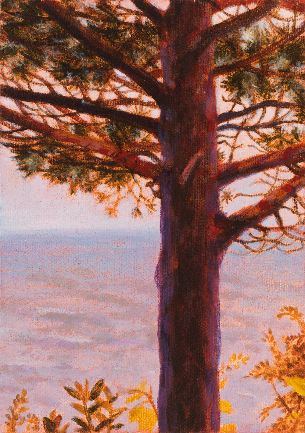 "New Buffalo Tree, 1996, acrylic on canvas, 7"" x 5"""