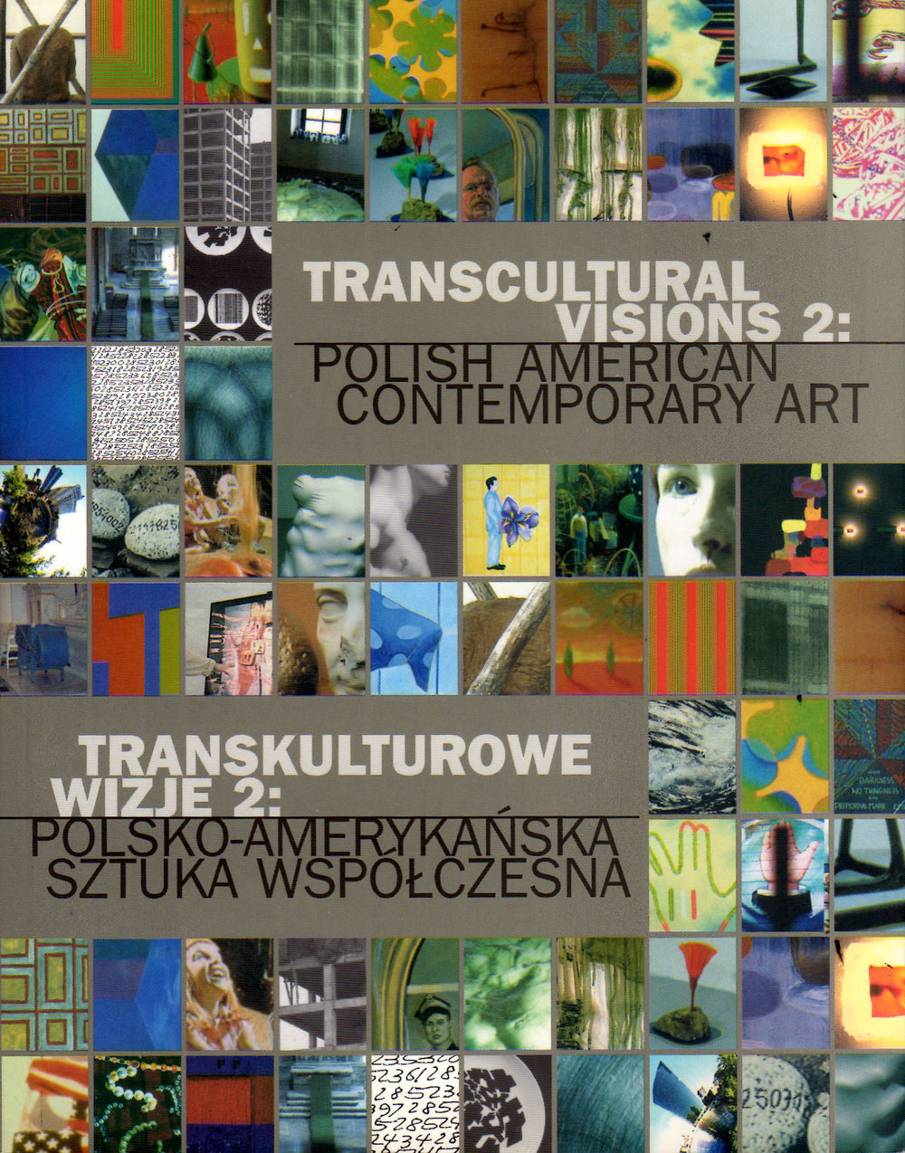 Transcultural Visions 2: Polish American Contemporary Art  was published in conjunction with an exhibition curated by Elżbieta Kościelak and Małgorzata Kościelak.  Transcultural Visions  was shown at the Hyde Park Art Center and the National Museum in Szczecin, Poland. This book, with essays by Corey Postiglione and Robert J. Loescsher, reflects on global flows and the Polish immigrant American experience.